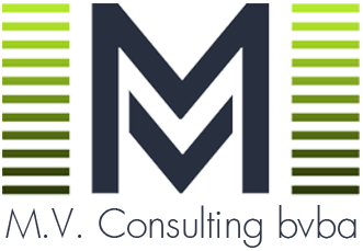logo MV-Consulting